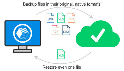 Native format backup and restore
