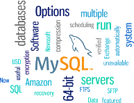 MySQL Backup Features